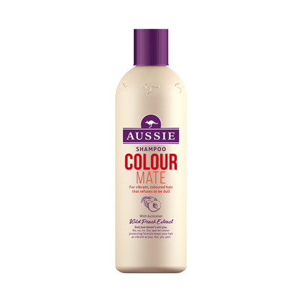 Colour Mate Shampoo