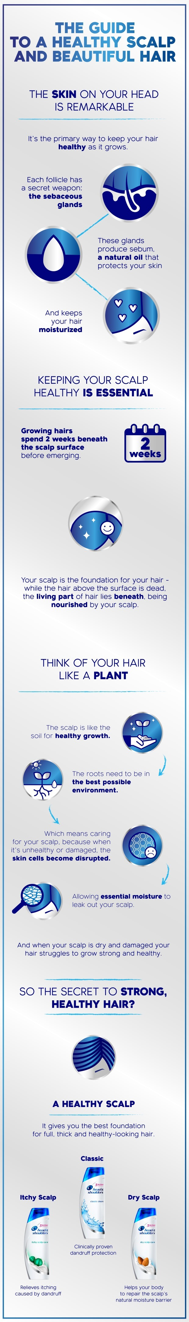 The guide to a healthy scalp and beautiful hair